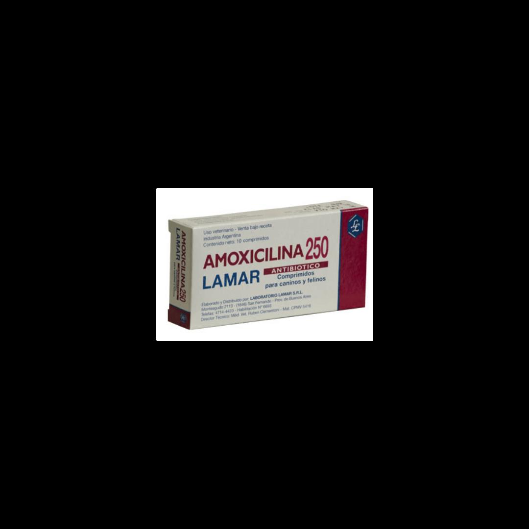 Amoxicilina 250mg x10 Comprimidos