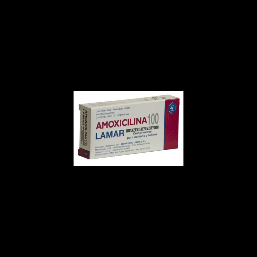 Amoxicilina 100mg x 10 Comprimidos